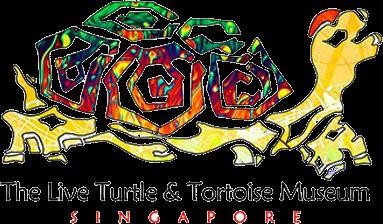 Turtle Tortoise Forum